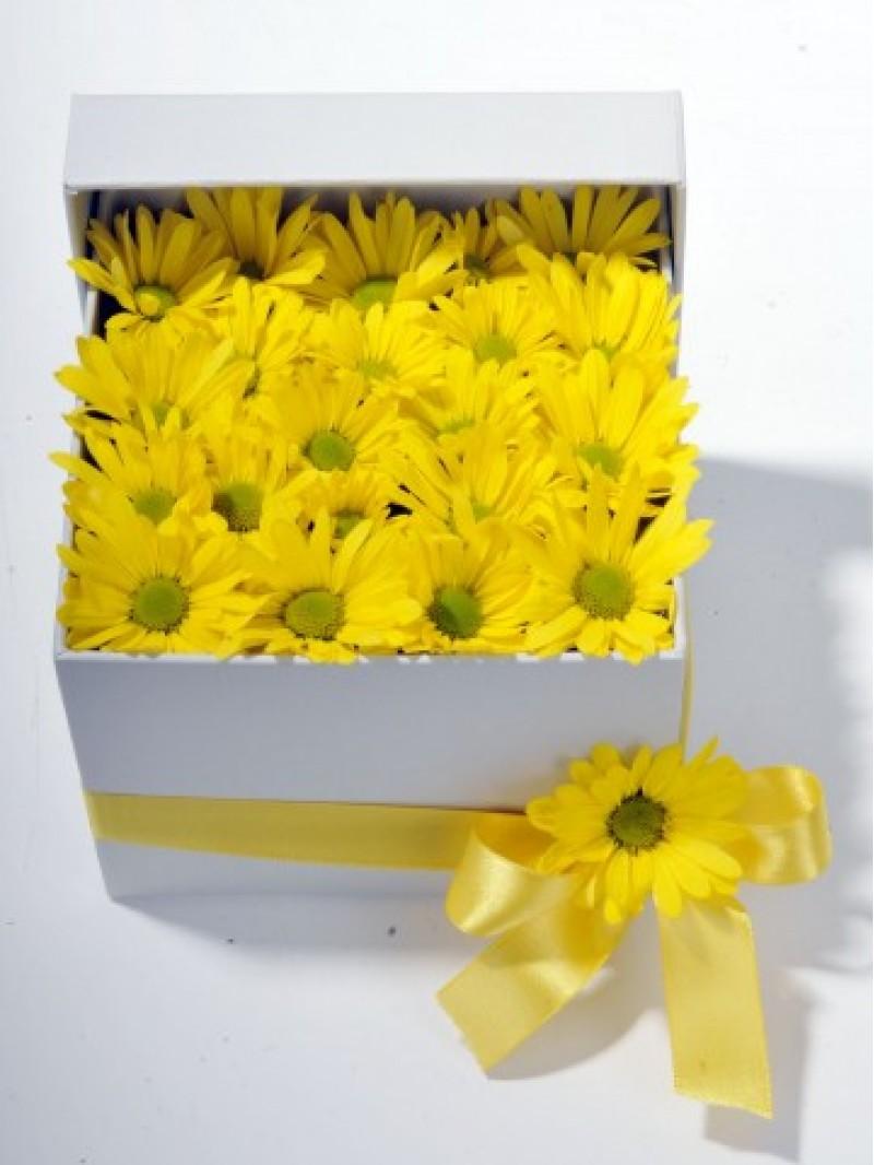 Bahar Özlemi Kır Çiçeği