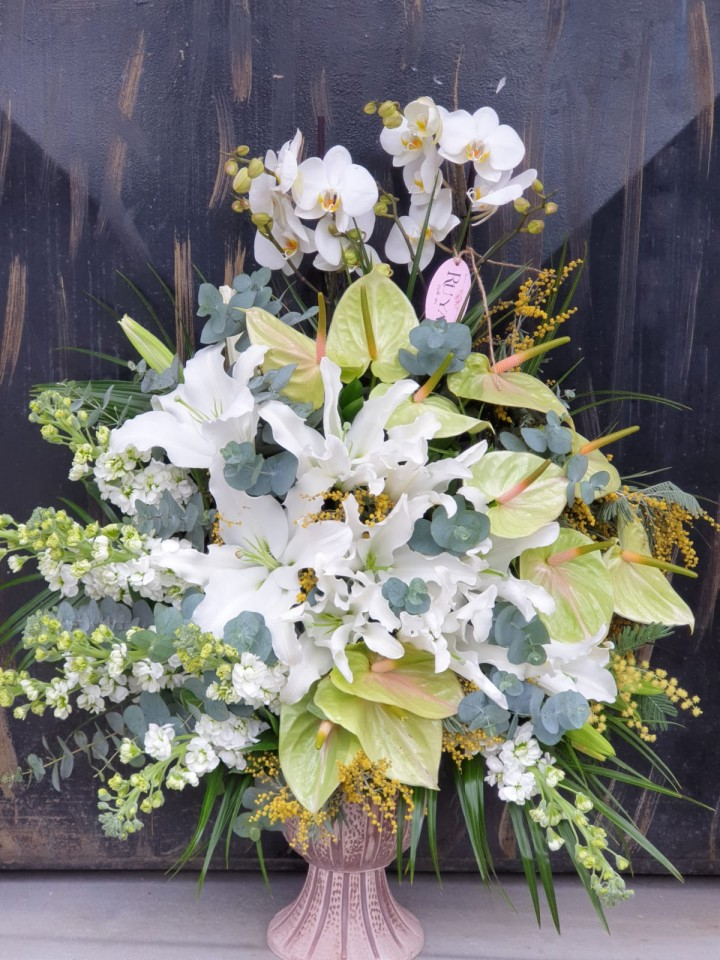 Anthuriums, Orchids & Liliums, Pure Elegancity