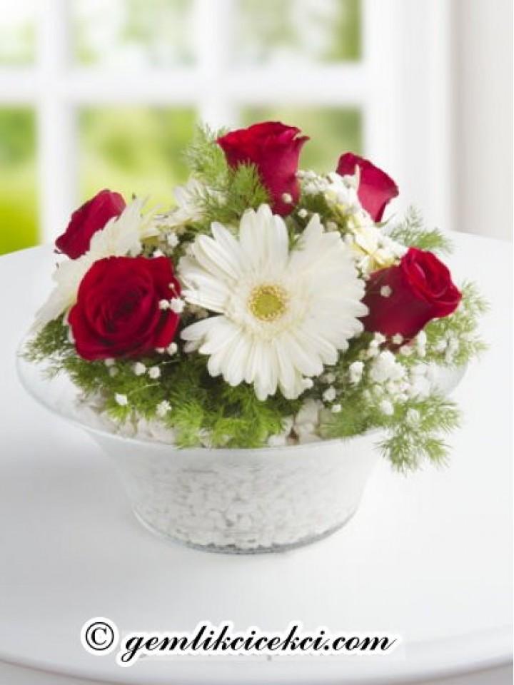 Kasede Beyaz Gerbera ve Kırmızı Güller